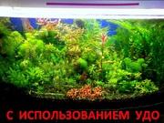 Удобрения(микро,  макро,  калий,  железо) удо для аквариумных растений==